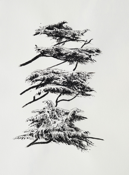 Evasion n°2, encre de Chine sur papier, 60 x 40 cm, 2016