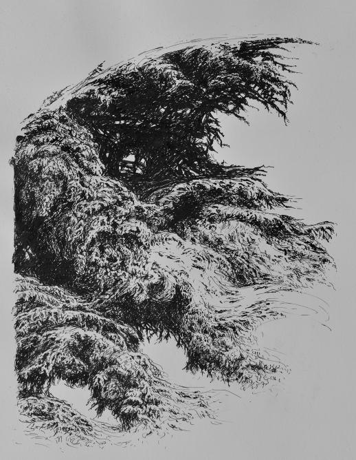 Escale dans le parc de Sceau, encre de Chine sur papier, 50 x 40 cm, 2015 (collection privée)